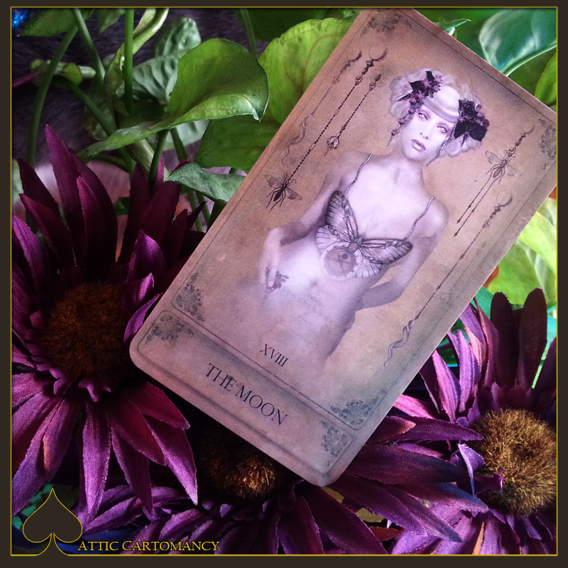 Attic Cartomancy - Card of the Day - From the Sepia Stains Tarot - The Moon