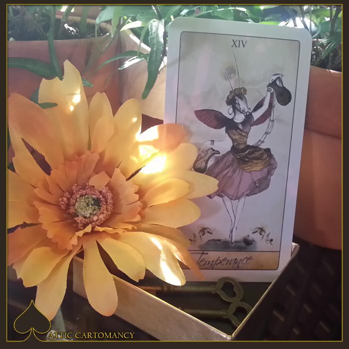Attic Cartomancy - Card of the Day - The Isidore Tarot Alternative Temperance Card