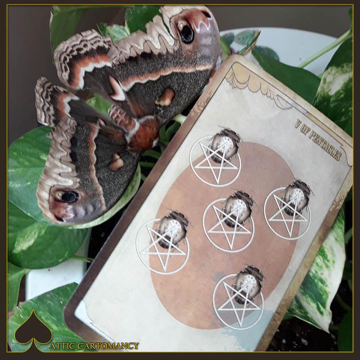 Attic Cartomancy - Card of the Day - Black Ibis Tarot - Five of Pentacles