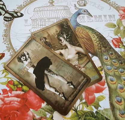 The Black Ibis Tarot
