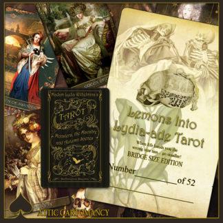 Madam Lydia Wilhelminas Tarot of Monsters, the Macabre, and Autumn Scenes - Bridge Size Deck