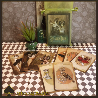 October Sale for the Black Ibis Tarot